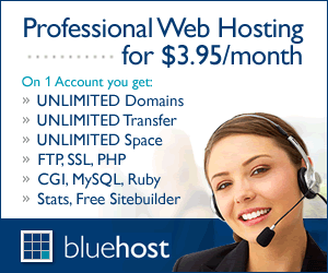 Professional Web Hosting for $3.95 per month