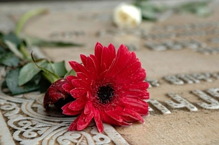 picture of a flower on a grave