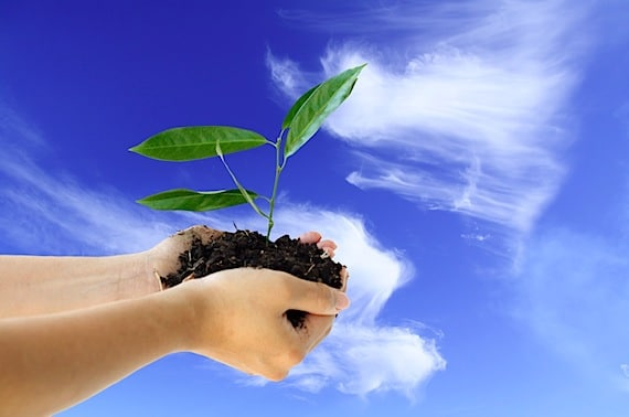 Hands holding a new plant against blue sky - Photo courtesy of ©iStockphoto.com/arekmalang, Image #1977424