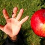 Four Temptations Christian Leaders Face