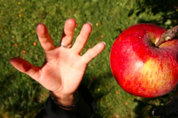 A Hand Reaching for an Apple - Photo courtesy of ©iStockphoto.com/Edwardward, Image #2307155
