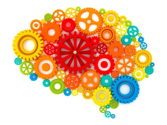 Colorful Gears Making Up a Human Brain - Photo courtesy of ©iStockphoto.com/adventtr, Image #13485370