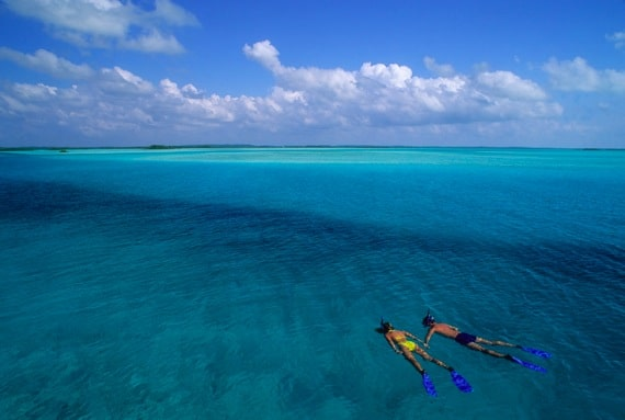 A Couple Snorkeling in the Ocean - Photo courtesy of ©iStockphoto.com/Tammy616, Image #3948552