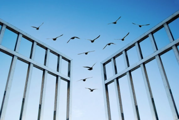 Birds Fliying Over an Open Gate - Photo courtesy of ©iStockphoto.com/AnsonLu, Image #15606746