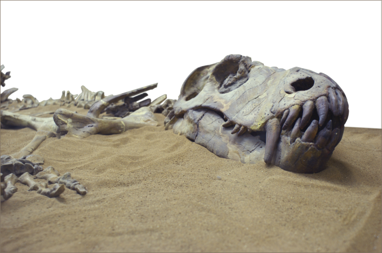 dinosaur in the sand