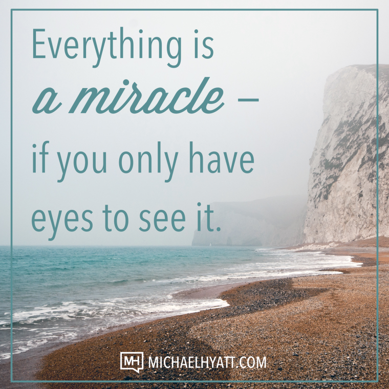Everything is a miracle—if you only have eyes to see it. -Michael Hyatt