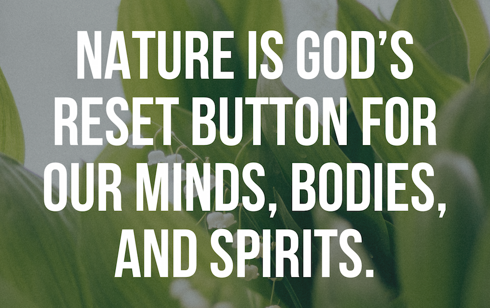 Nature God S Reset Button