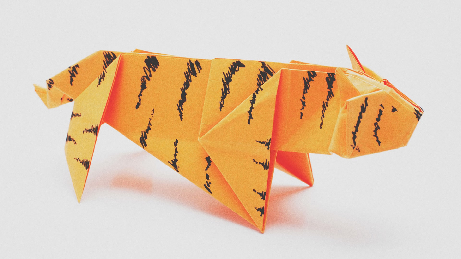 cornering the paper tiger